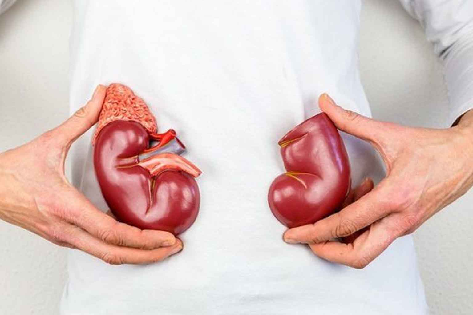 Kidney Infection - 5761