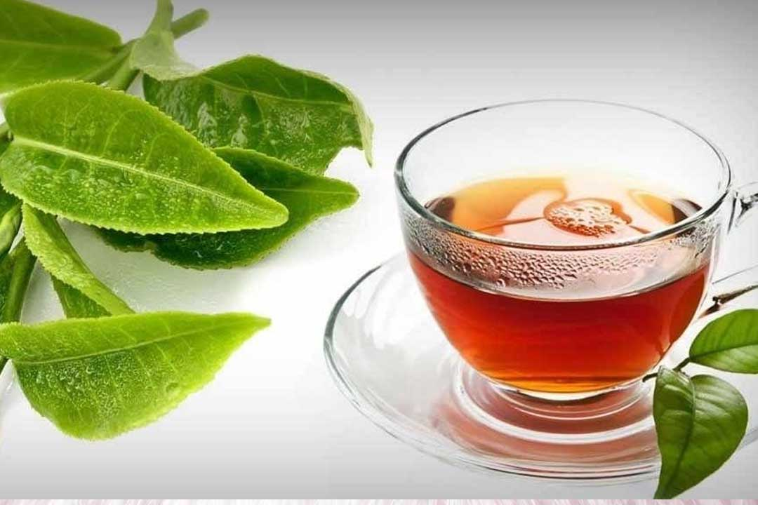guava leaves benefits