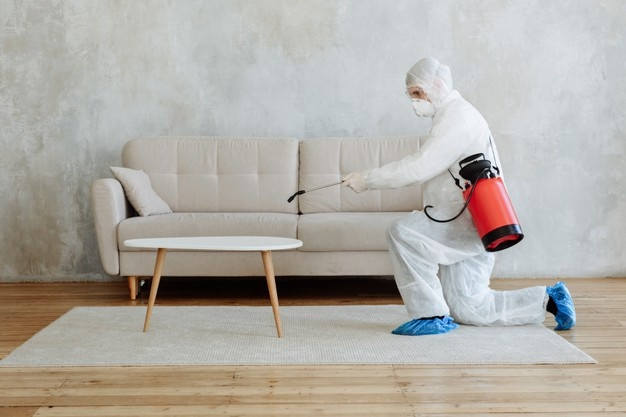 benefits of termite inspection